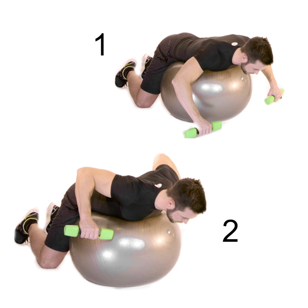 Spinte frontali su fitball